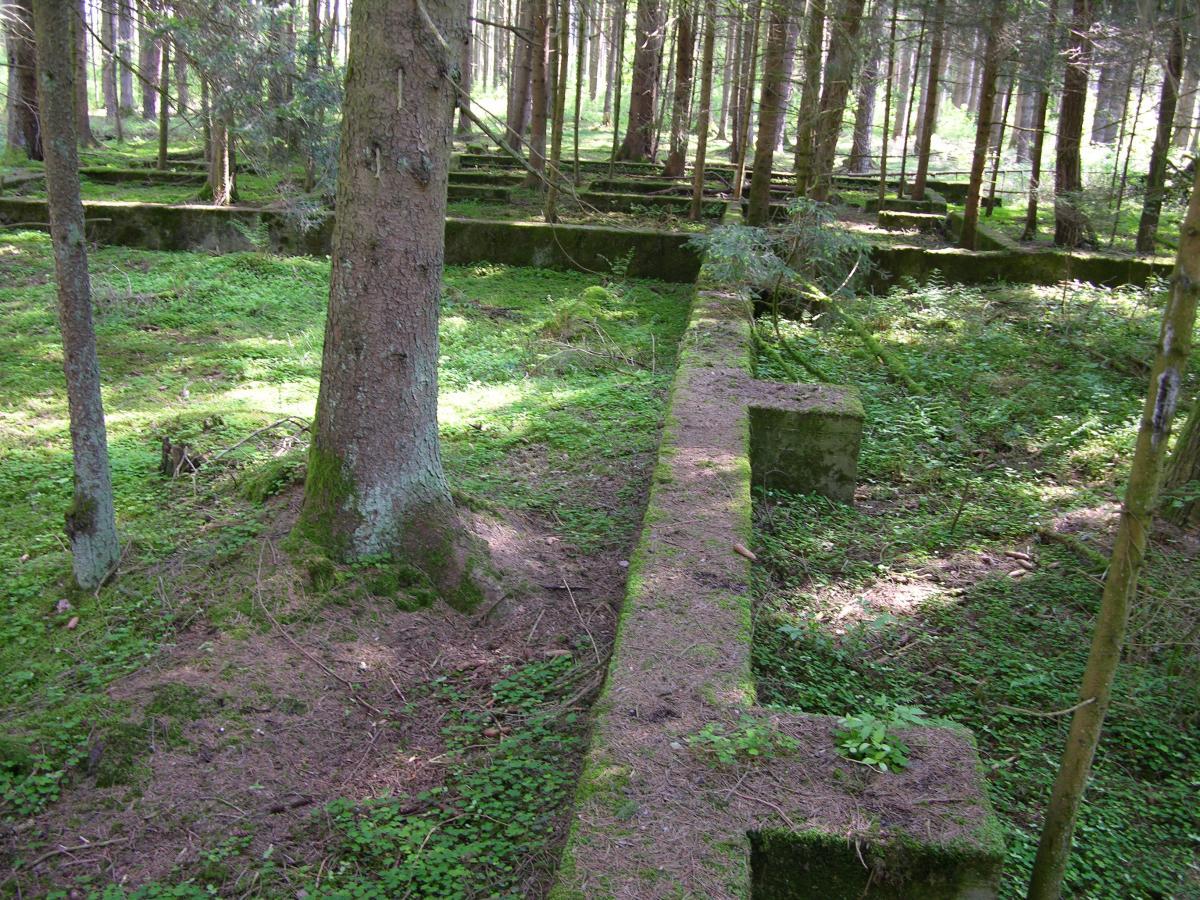Waldlager-Fundamente